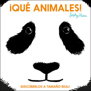 ¡QUÉ ANIMALES!